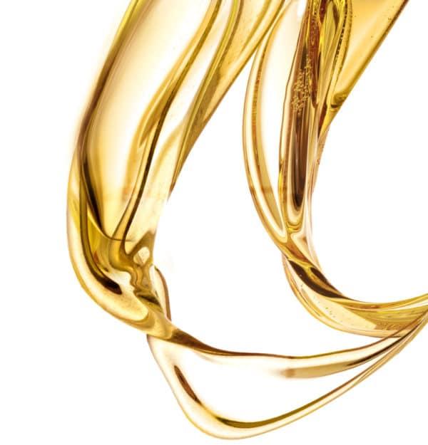 Leonor Greyl ulje za zastitu kose i tela tekstura